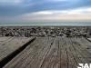baie-de-somme-05.jpg